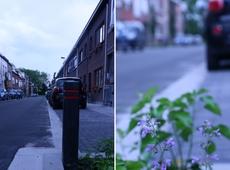 N-VA investeert in propere straten